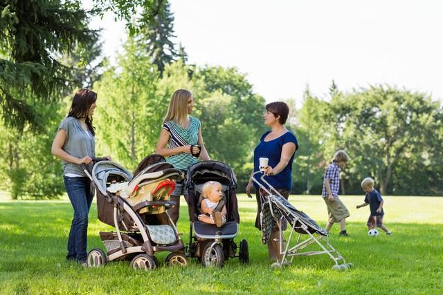 Мамочки общаются в парке
