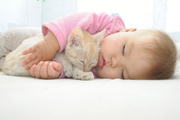 Ребенок спит с кошкой
