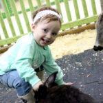 Контактный зоопарк с годовалым ребенком: наш опыт и впечатления