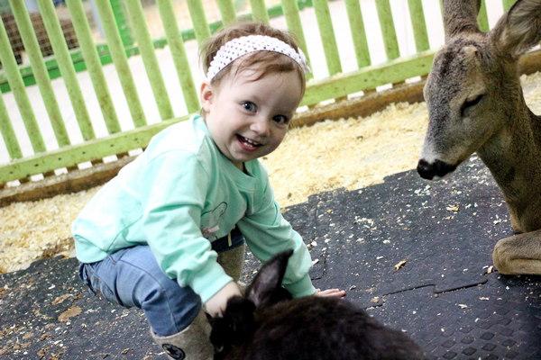 Ребенок в контактном зоопарке