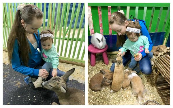 C ребенком в контактном зоопарке