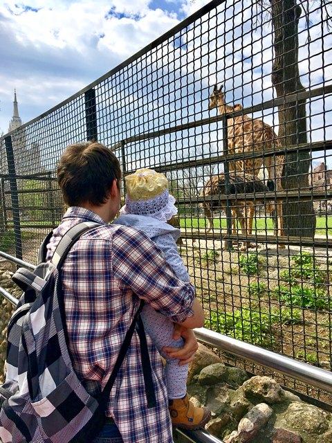 Московский зоопарк в апреле